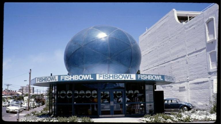Boyd_Fishbowl
